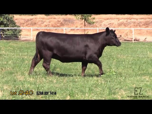 EZ Angus Ranch Lot 24C