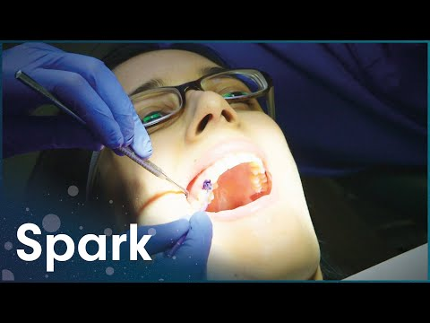 how-brushing-your-teeth-increases-your-lifespan-|-the-truth-about-your-teeth-|-spark