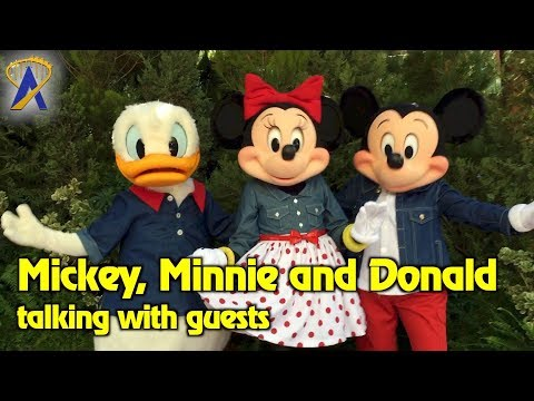 Talking Donald Duck, Minnie & Mickey Mouse interact with guests at Disney California Adventure