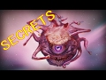 Dungeons And Dragons Lore Beholder Secrets mp3