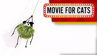 CAT GAMES - Green Spider! 50FPS (Entertainment Movie for cats)