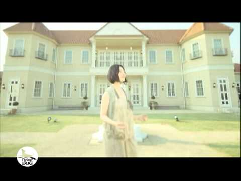 坂本真綾 / everywhere 【PV】