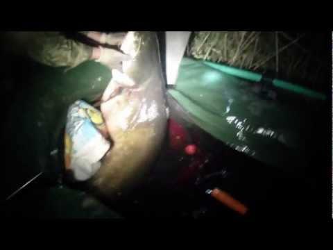 охота на сома с ружьем ночью видео