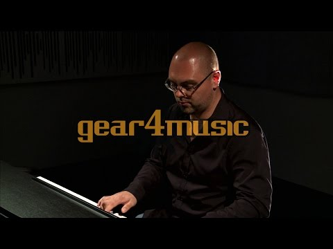 DP-10plus Digital Piano by Gear4music (Performance)