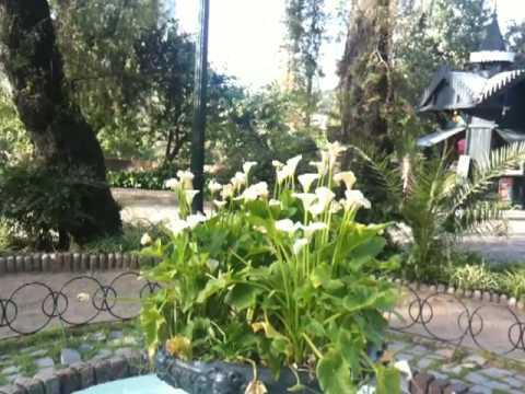 Oh, le beau printemps de novembre ! (Santiago de Chile)