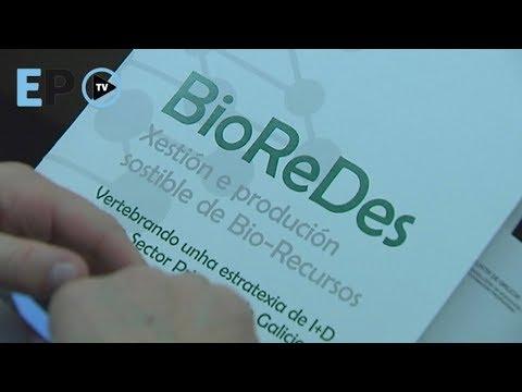 USC y Xunta crean BioRedes para fomentar sinergias entre grupos de I+D para el sector primario