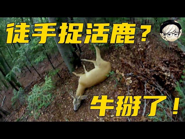 德爷居然在荒野徒手捉到一头鹿,给自己做了份超豪华大餐!《单挑荒野02》【宇哥讲电影】