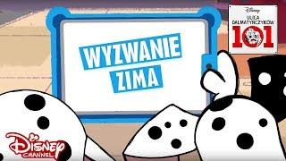 ❄️ Zwierzęta kontra ludzie - Zima!   Ulica Dalmatyńczyków 101   Disney Channel Polska
