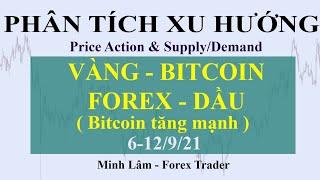 PHÂN TÍCH XU HƯỚNG VÀNG - BITCOIN - FOREX - DẦU 6-12/9/21 ( Bitcoin tiếp tục tăng mạnh )