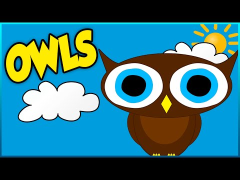 All About Owls - Educational Video For Kids, Toddlers and Babies - Cute Owl Cartoon