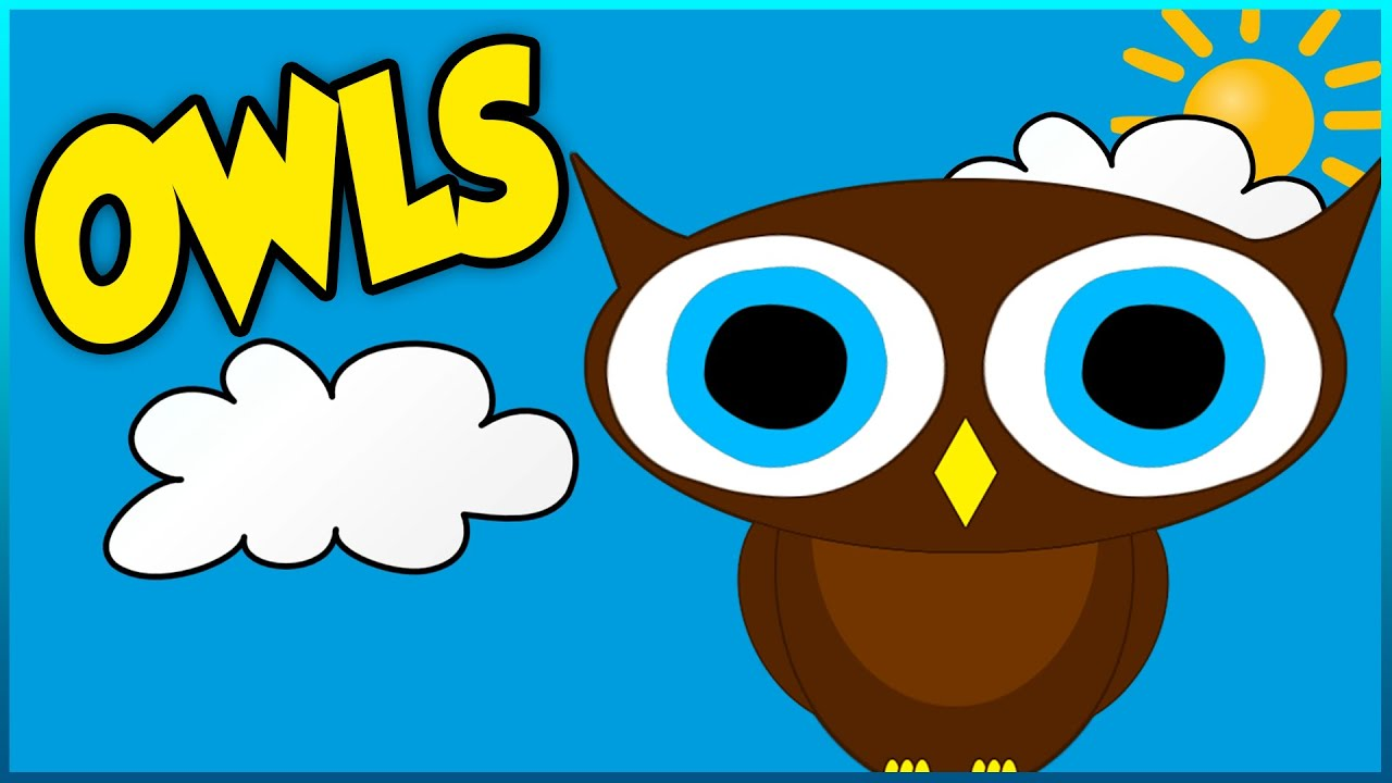 All About Owls - Educational Video For Kids, Toddlers and ...