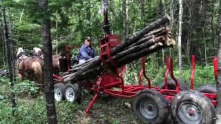 Chargeuse à bois pour chevaux