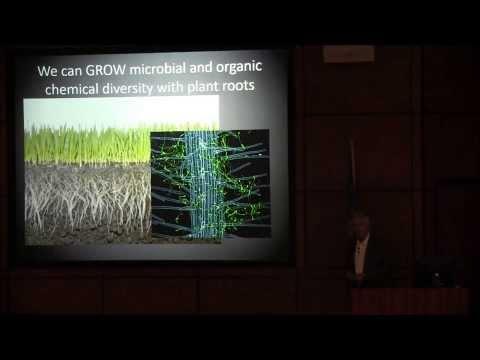 A Soil Health Score, Dr. Ray Ward, Ward Labs, Kearney, NE.