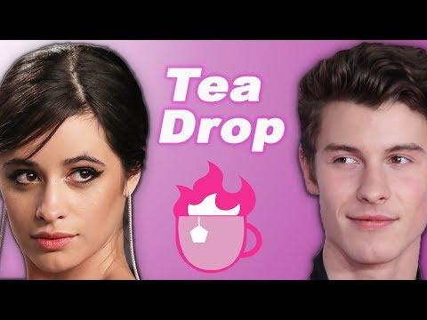 Camila Cabello & Shawn Mendes Relationship Fake? | Tea Drop Ep 2