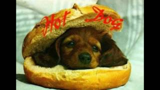 Szmieszne psy slajdy