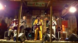 James Wheeler & Bob Stroger - Mississippi Delta Blues Festival 2013