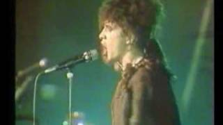 Canary bay-Indochine (Live au  Zenith)