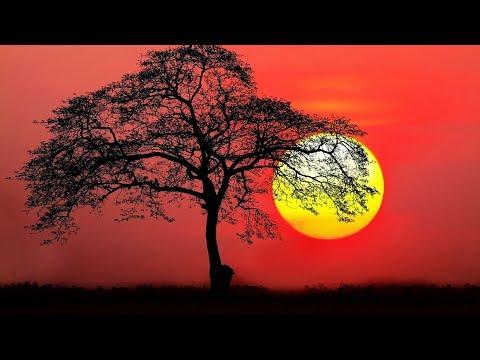Ultimate Calming Mantra    Tan Man Shaant   Mantra Meditation Music