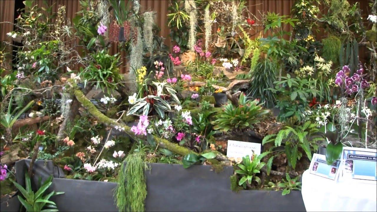 orchideenausstellung weilerbach ostern 2013 youtube. Black Bedroom Furniture Sets. Home Design Ideas