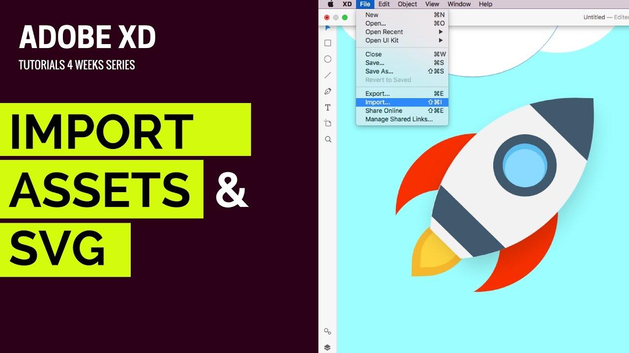 Import Assets & SVG in Adobe XD