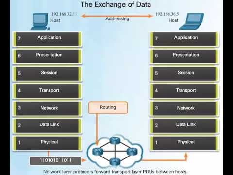 The Exchange Of Data And The OSI Model Animation