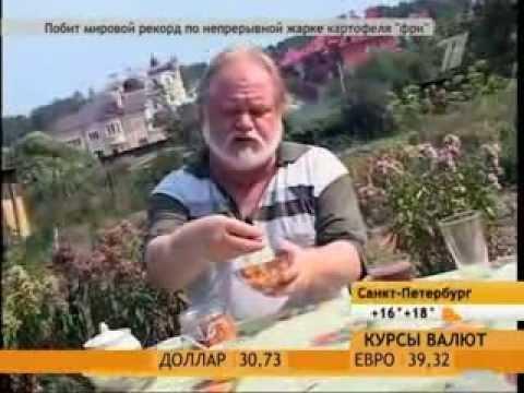 Лечение рожистого воспаления - Лущик Михаил Николаевич