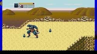 Flashback PC Games Sega Genesis (Golden Axe 3, Alien 3, Prince of Persia ...)