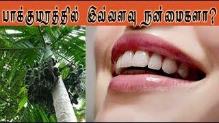 Betel nuts benefits & medicinal uses (பாக்குமரத்தின் பயனும் மருத்துவ குணமும்   )