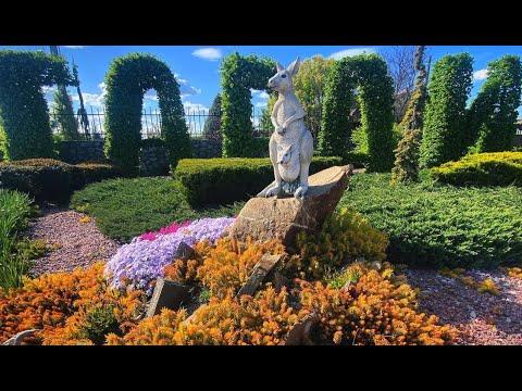 Интернет магазин растений №1 в Украине - Гарди. Упаковка саженцев