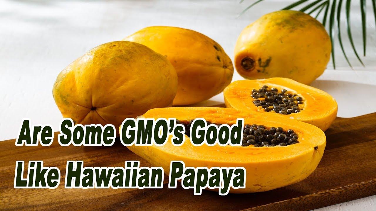 papaya mag parazita orvosság