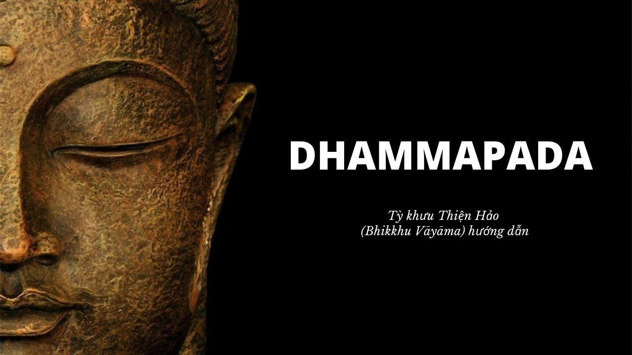 🔴 [LIVE] Lớp Kinh Pháp Cú Dhammapada Pali - Câu 83-84 I Sư Thiện Hảo Giảng Dạy