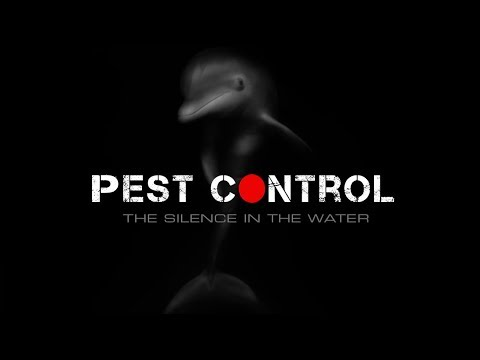 Japan - Pest Control - The Silence In The Water