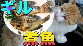 ブルーギルを釣って食う 外来風煮魚 River-fishing Catch & Eat