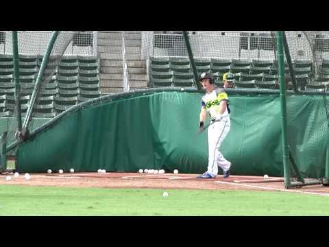 Brady Allen Hitting Fm16