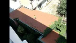 Parkour sui tetti Milanesi