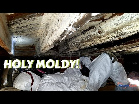 Crawl Space Mold Remediation | Greensboro, NC