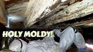 Crawl Space Mold Remediation   Greensboro, NC