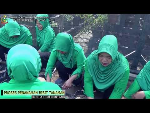 GREEN HOUSE PERSIT KODIM 0908 BTG