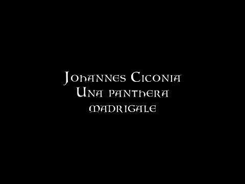 Johannes Ciconia - Una panthera