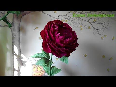 видео: Большой пион из гофрированной бумаги