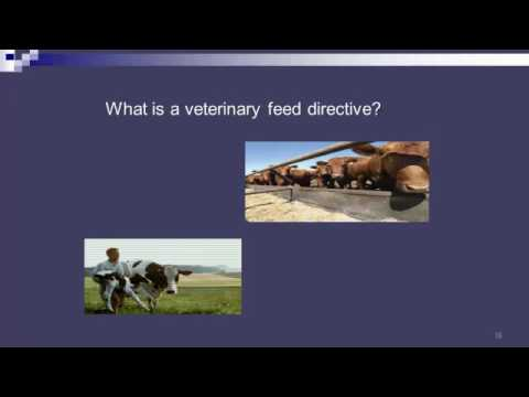 Dr. Michael Murphy - Medically Important Antimicrobials in Animal Agriculture