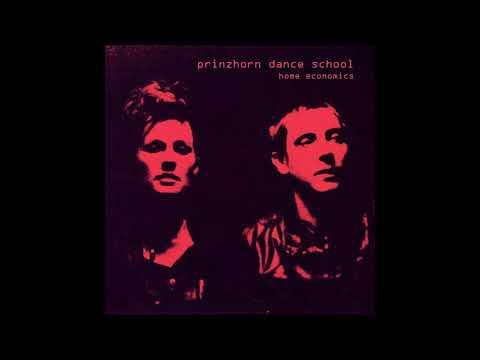 Prinzhorn Dance School - Home Economics (2015) indie rock | indie | post punk | british