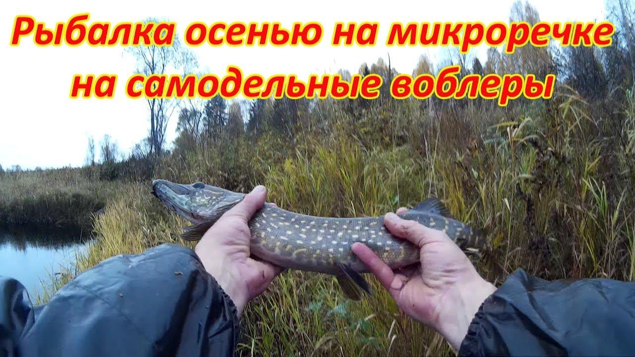 ловля щуки на реке на воблеры осенью