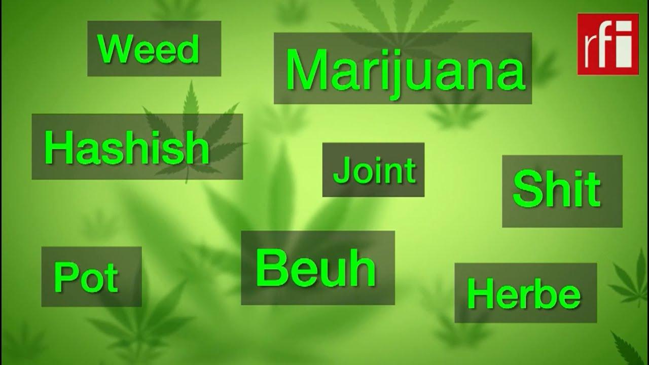 Le cannabis est légalisé au Canada, et la France ?