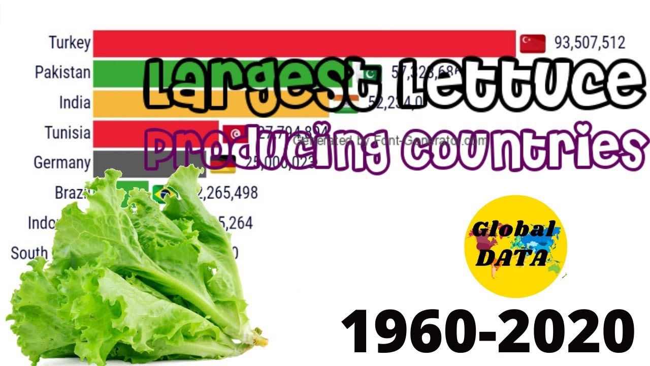 Largest Lettuce Producing Countries (1960-2020), Top 10 Lettuce Producing Countries