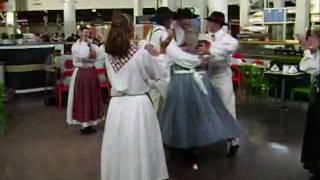 Ikea Caryfish Festival 2009, Schaumburg, Il Swedish Dance