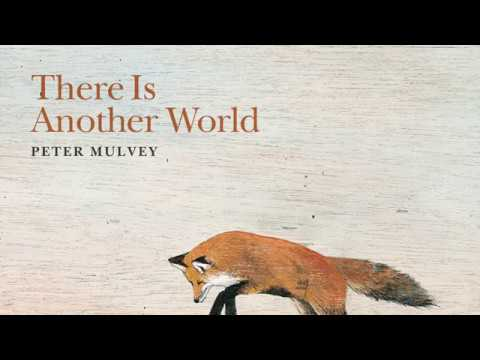 Peter Mulvey: The Fox Mp3