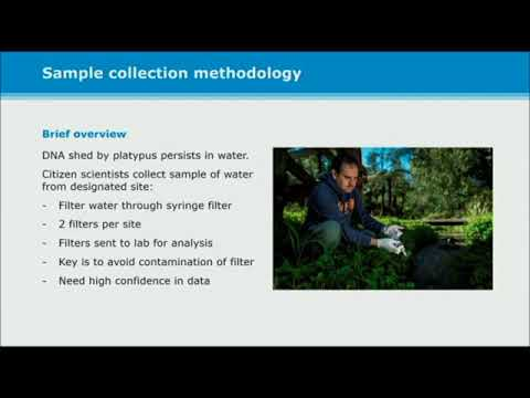 T Preston: Multiple Means of Communication - Getting The Methods Across