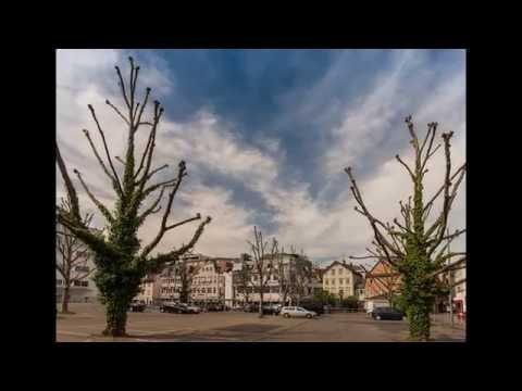 Zeitraffer Shorties: Parkplatz im Frühling 01 [HD]