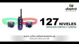 Dogtra 2500 Tb Collar Adiestramiento Perro + Collar De Becada